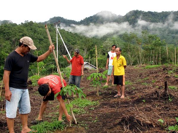 Tekad Hijau Desa Tanjung di Kaki Pegunungan Muller