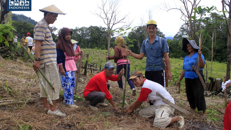 reklamasi lahan kritis di desa nanga yen