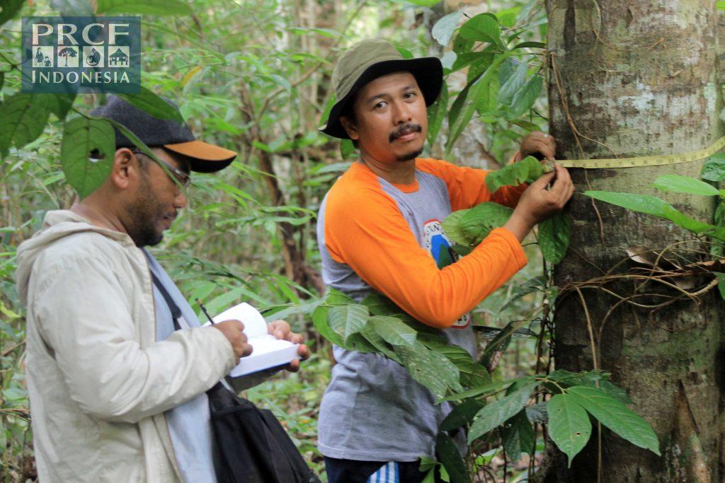 Proses pencatatan data analisis vegetasi di Sungai Sumpak Batang Lupar Kapuas Hulu
