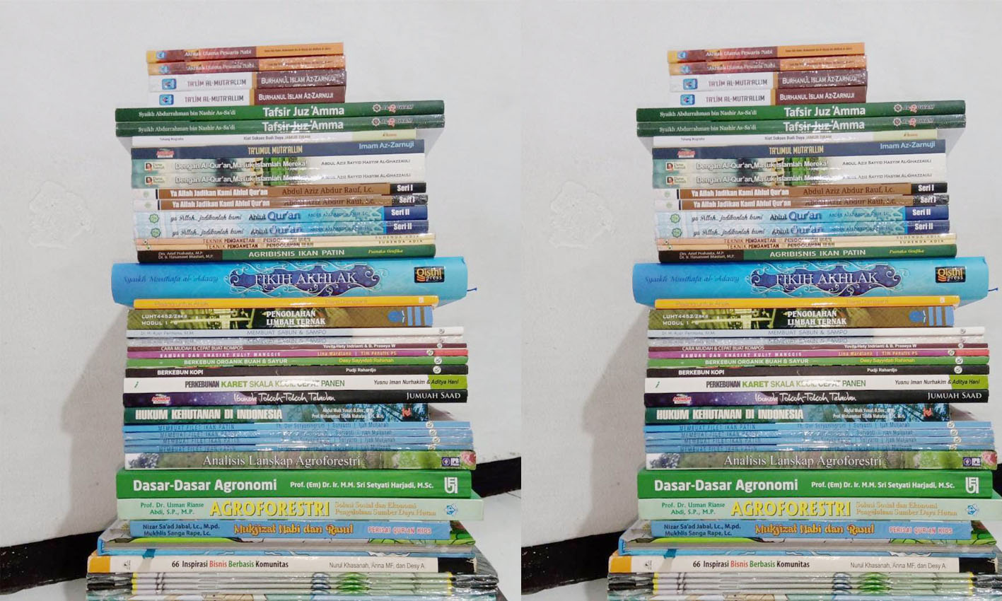 30 Judul Buku Baru untuk Koleksi Perpustakaan Pandai Membaca Nanga Lauk