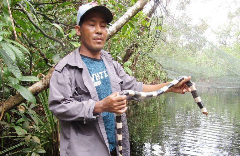 Patroli Hutan Secara Rutin untuk Menjaga Keseimbangan Alam