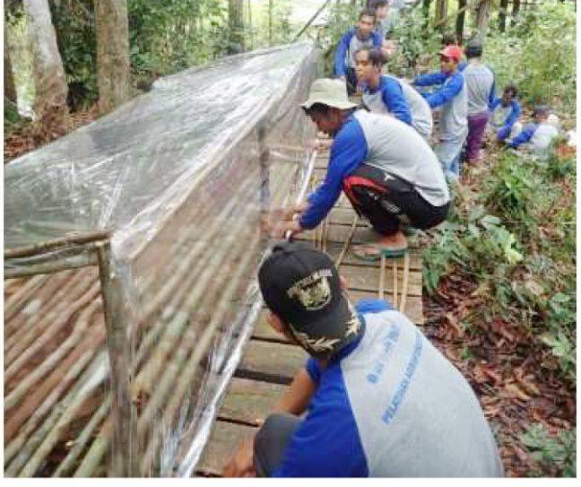 Praktik agroforestri berupa pembuatan sungkup untuk persemaian bibit pohon