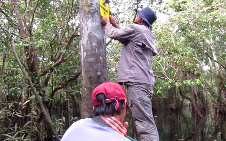 Tanda Batas Hutan Desa Terpasang di 24 Titik