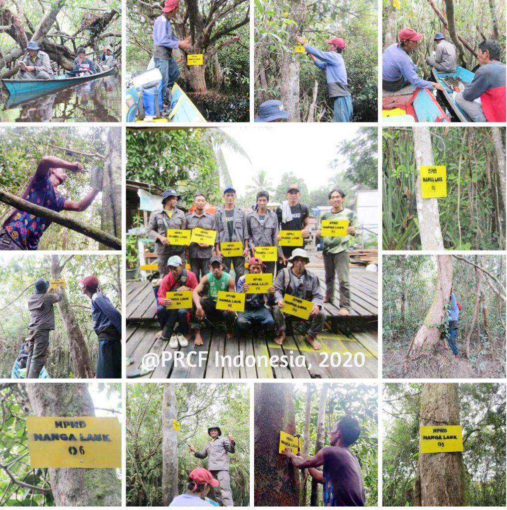 Aksi tim patroli hutan LPHD Lauk Bersatu saat memasang tanda batas hutan desa