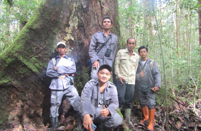 Program Konservasi dan Pencapaian di Nanga Lauk