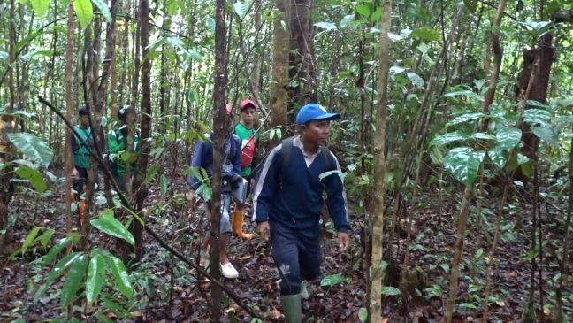 Patroli batas desa dilakukan LPHD Lauk Bersatu didampingi PRCF Indonesia