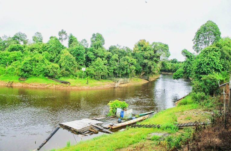 Peluang Ekowisata Desa Nanga Lauk