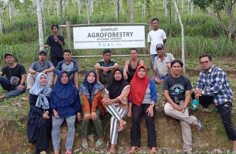 Peran Perempuan dalam Pengelolaan Hutan Desa