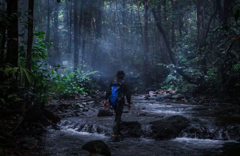 Peralatan Standar Patroli Hutan Desa