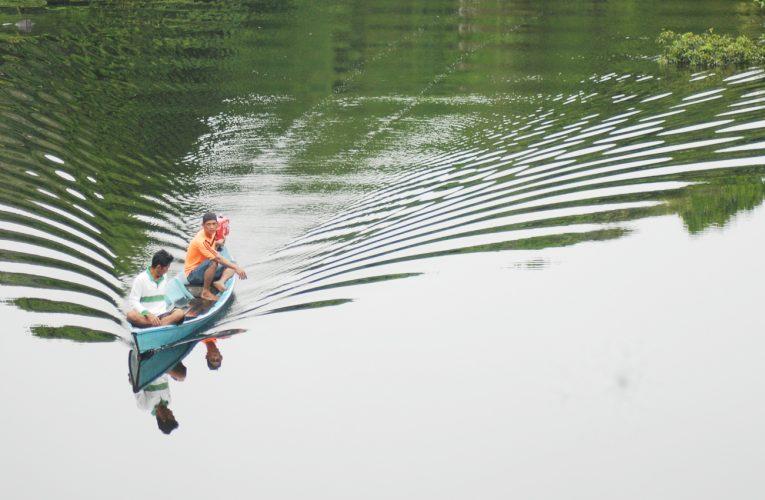 Analisis Perubahan Tutupan Lahan Desa Nanga Lauk