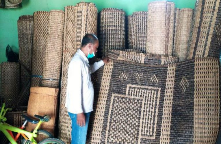 Survei Rotan KUPS Karya Murni ke Desa Jagoi