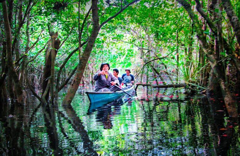 Nanga Lauk Village Forest Management