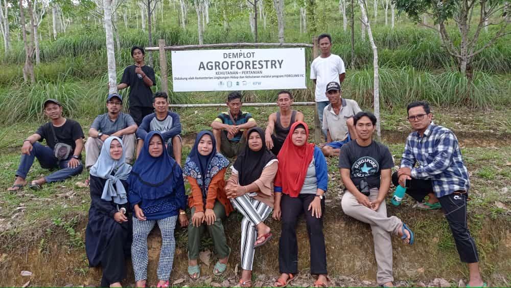Peran perempuan dalam belajar agroforestry